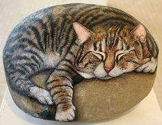 Sleepy cat painted on stone by Italian artist Ernestina Gallina - photo from viola.bz