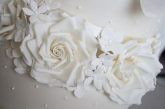Ivory roses | Flickr - Photo Sharing!