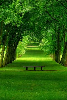 Lush Green Park, Chamrande, France make you feel calm. love this green Beautiful World, Beautiful Places, Beautiful Pictures, Amazing Places, Beautiful Park, Peaceful Places, Wonderful Places, Beautiful Scenery, Amazing Photos