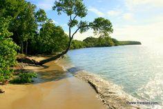 Martinique photo Plage de l'Anse Caritan à Sainte Anne