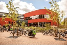 Woburn Forest Center Parcs celebrates its one year anniversary | Bedfordshire News