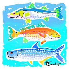 13 Best Redfish Fins Images
