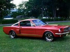 Picture of 1966 Ford Mustang Shelby
