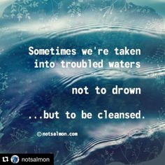 #Repost @notsalmon with @repostapp. ・・・ Sometimes were taken into troubled waters not to drown but to be cleansed. #notsalmon #quote  #inspiration #inspire #positivity #positive #karensalmansohn #cleanse #cleansed #troubled #water #quotes