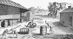 CURING FISH, 18th CENTURY Photograph by Granger - CURING FISH, 18th CENTURY Fine Art Prints and Posters for Sale
