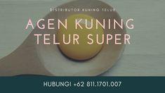 READY STOK!!! WA +62 822.1919.9897, Jual Kuning Telur Untuk Olesan Kue Kering Jakarta SelatanPutih Telur Untuk Kebutuhan Anda, Bisa COD, Ambil Di tempat, atau Kirim Via Kurir Ojek Online, Ready Stok, Untuk Informasi lebih Lanjut Silahkan Hubungi Kami di+62 813.8008.5544 | Khaya. Atau Bisa Langsung Ke Alamat Kami Di Jalan Jaya Kusuma 1 No 06, RT 07/RW 01, Kp Makasar, Jakarta Timur 13570, Jakarta. JAgen Kuning Telur Frozen Jakarta Utara, Agen Kuning Telur Fitnes Jakarta Utara Frozen, Diet, Make It Yourself, Blog, Blogging, Banting, Diets, Per Diem, Food