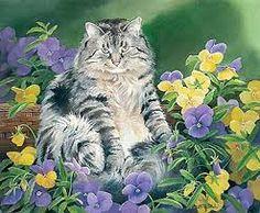 Big Pansy by Susan Bourdet