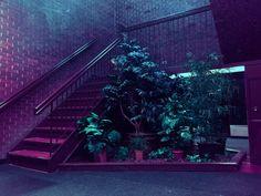 Oblit's Photo Purple Aesthetic, Aesthetic Dark, Chiaroscuro, Soft Grunge, Neon Lighting, Vaporwave, Oeuvre D'art, Les Oeuvres, Light In The Dark
