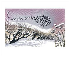 Niki Bowers > Mid Winter Starlings