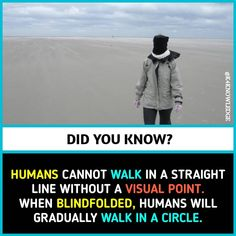Walk in a straight line Wow Facts, Real Facts, Wtf Fun Facts, Funny Facts, True Interesting Facts, Interesting Facts About World, Intresting Facts, Psychology Fun Facts, Psychology Quotes