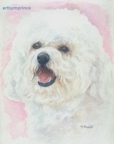 Bichon Frise Dog Watercolor Painting Fine Art Pencil by happyart