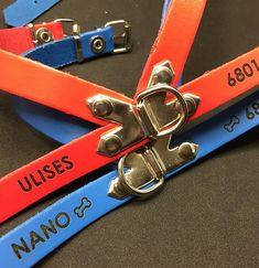 ULISES y NANO ya tienen su arnés de piel. Disponible en tres colores ❤️💙💗 y en tres tamaños para los peludos más pequeños  y medianos. #pinpetproducts #pinpet #collaresperros #collarpersonalizado #identificaatumascota #❤️🐶