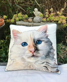 White cat organic cotton pillow with a piped edging, Wendy Darker image, 18 inch square accent cushion, purrfect pet pillow, housewarming
