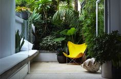 Inside/Outside: Teeny urban courtyard. Just right. Located in Sydney, Australia. Designed by Australian firm, Think Outside Gardens.