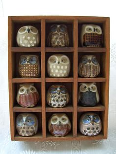 VINTAGE MINIATURE OWLS IN WOODEN DISPLAY SHADOWBOX - COLLECTION SET - MUST SEE!