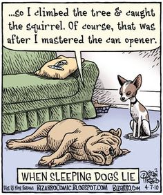"""so I climbed the tree & caught the squirrel. Of course, that was after I mastered the can opener."""" WHEN SLEEPING DOGS LIE - Bizarro Funny Cartoon Pictures, Cartoon Jokes, Cartoon Dog, Funny Cartoons, Bizarro Comic, Beste Comics, Dog Jokes, Animal Humour, Geek Humor"""