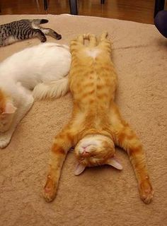 Esta postura humana es muy relajante