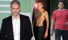 AMAZING STORIES AROUND THE WORLD: 'Prison Break' Star Responds to Body-Shaming: Says...