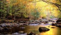 Miniatura de Bellos Paisajes Naturales En Widescreen 2