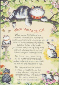 When I Am An Old Cat
