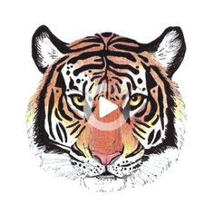 Colorful Tiger temporary tattoo vintage Fake waterproof boho small wrist tattoo custom #wristtattoos Cool Wrist Tattoos, Flower Wrist Tattoos, New Tattoos, Monkey D Luffy, Angel Eyes, Zoro, Best Lip Gloss, Face Down, Temporary Tattoo