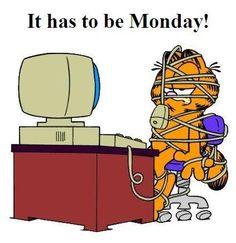 Garfield on computer Garfield Quotes, Garfield Cartoon, Garfield And Odie, Garfield Comics, Monday Humor, Monday Quotes, Garfield Pictures, Funny Pictures, Work Memes