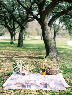 A blanket with the couple's photos: http://www.stylemepretty.com/2015/04/13/romantic-surprise-proposal/ | Photography: Dana Fernandez - http://www.danafernandezphotography.com/