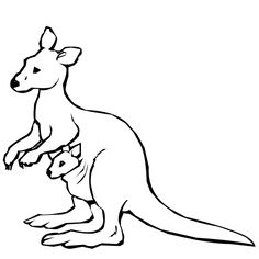 kangaroo colouring page