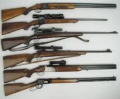 Image result for old hunting gun