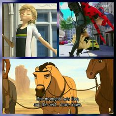 One minute I was free and the next......... more ropes. Qoute from spirit stallion of the Cimarron. I mixed it with miraculous: tales of ladybug and chat noir