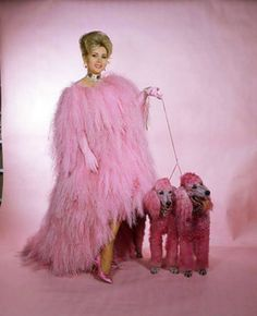 Zsa Zsa Gabor & her pink poodles, 1951
