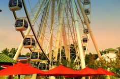 So many great attractions in Pigeon Forge! The Wheel at the Island has a wonderful view of the Smokies!