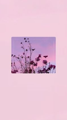 İphone Wallpapers> Pinterest : esina1 Pink Wallpaper, Tumblr Wallpaper, Flower Wallpaper, Screen Wallpaper, Wallpaper Quotes, Cool Wallpaper, Aesthetic Lockscreens, Aesthetic Backgrounds, Aesthetic Wallpapers