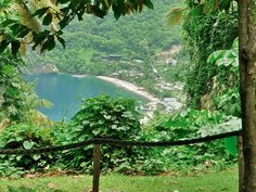 Soufrière Bay, St. Lucia. It's so green and lush!