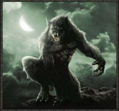 Google Image Result for http://images2.fanpop.com/image/photos/12600000/Werewolf-werewolves-12640998-530-496.gif
