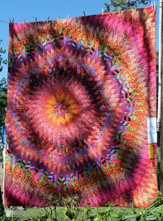 Poppy Blaze Big Bang by Sheree Lloyd.  Kaffe Fassett fabrics.  2014 Sisters Outdoor Quilt show, photo by Cath Hall | Wombat Quilts