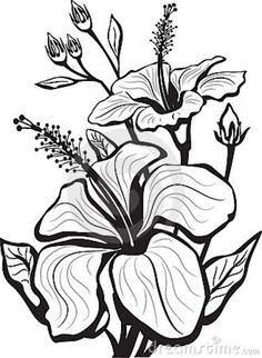 enredaderas de flores dibujos - Buscar con Google