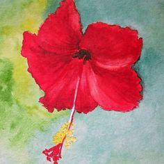 Carte postale - Fleur d'hibiscus