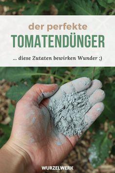 Gutter Garden, Gardening Magazines, Garden Birthday, Edging Ideas, Hacks Diy, Garden Styles, Dream Garden, Beets, Backyard Landscaping