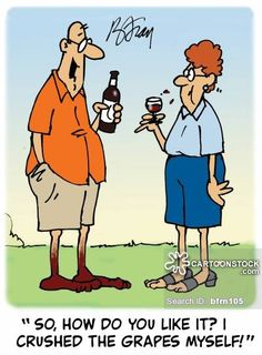 Image result for wine cartoons