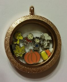 With this 19.00 order, you will receive EVERYTHING you see in this locket. Please choose your chain in the chain section :) I send out the same day if possible and use 2-5 day 3.00 shipping.