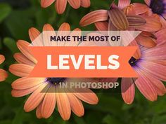If you're new to Photoshop check out this article on how to use the Levels Tool, it's essential to know how to use this valuable tool.