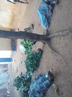Many Killed In Kasuwan Magani, Kaduna As Mayhem Breaks Out (Disturbing Photos) - Crime - Nigeria Nigerian Newspapers, Crime, Photos, Pictures, Crime Comics, Fracture Mechanics