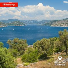 A #BlueVoyage through the ancient ruins of Amos right on the Mediterranean? Yes, Please!