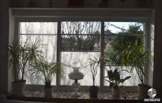 sensuna® Plissee Faltstores am Wohnzimmerfenster /sensuna® pleated blinds in the living room