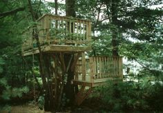 Very cool kid's tree house idea.  My little boy really wants one...only, we need a tree first.