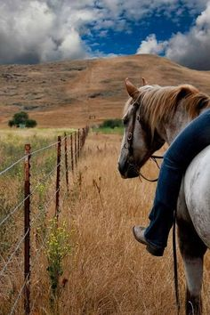 I grew up with two horses, but haven't been on one since I was fifteen. I always loved them and would love to get back to riding.