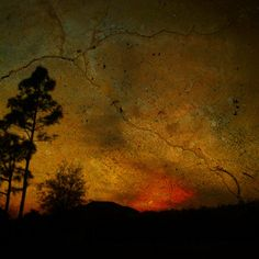 Van Gogh by Jeronimo Sanz | Flickr – Compartilhamento de fotos!