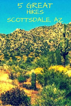 With 330 days of annual sunshine, Scottsdale, Arizona is perfect for outdoor activities.There is an incredible array of hiking and biking trails, from very easy to extremely difficult, that include amazing scenery, flora, and fauna. There are more than 400 miles of trails in the Scottsdale area for hiking, biking, climbing, horseback riding and nature appreciation.
