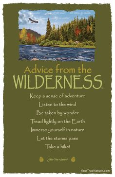 Advice from the Wilderness Frameable Art Card – Your True Nature, Inc. Advice Quotes, Wisdom Quotes, Me Quotes, Elvis Quotes, Advice Cards, Plants Quotes, Inspirational Quotes, Motivational Quotes, Nature Quotes